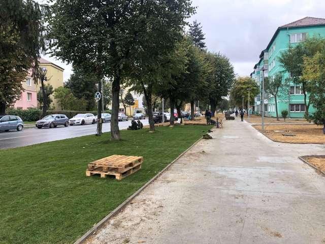 Modernizare de cartier: în Terezian se aștern rulouri de gazon